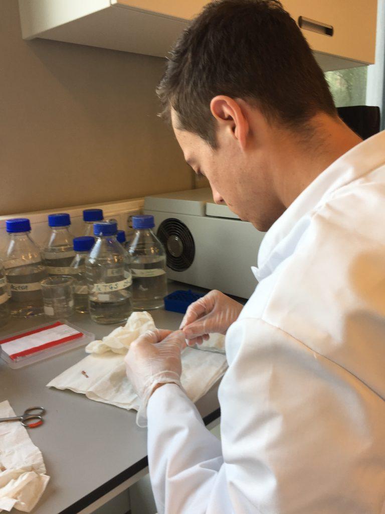 Daan Boersma in een lab bezig met wetenschappelijk onderzoek over sportvoeding
